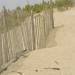 At the Beach…