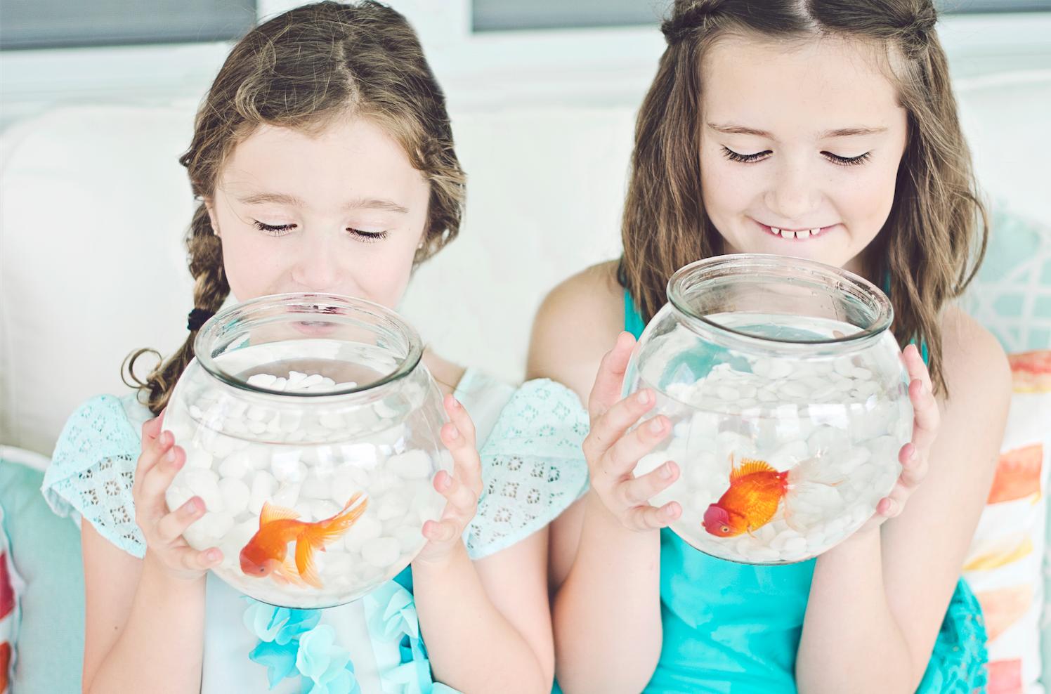 Our Little Mermaid  |  Kiki's List