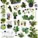 Best Faux Plants.
